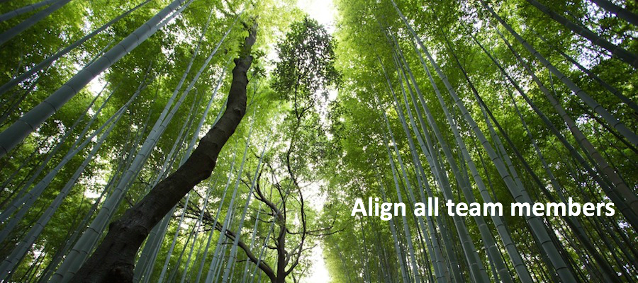 Image of bamboo like trees aligned to sky